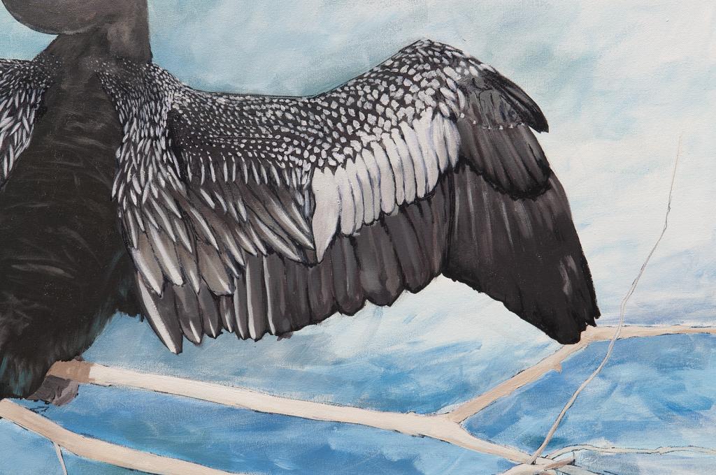 SnakeBird Closeup Wing